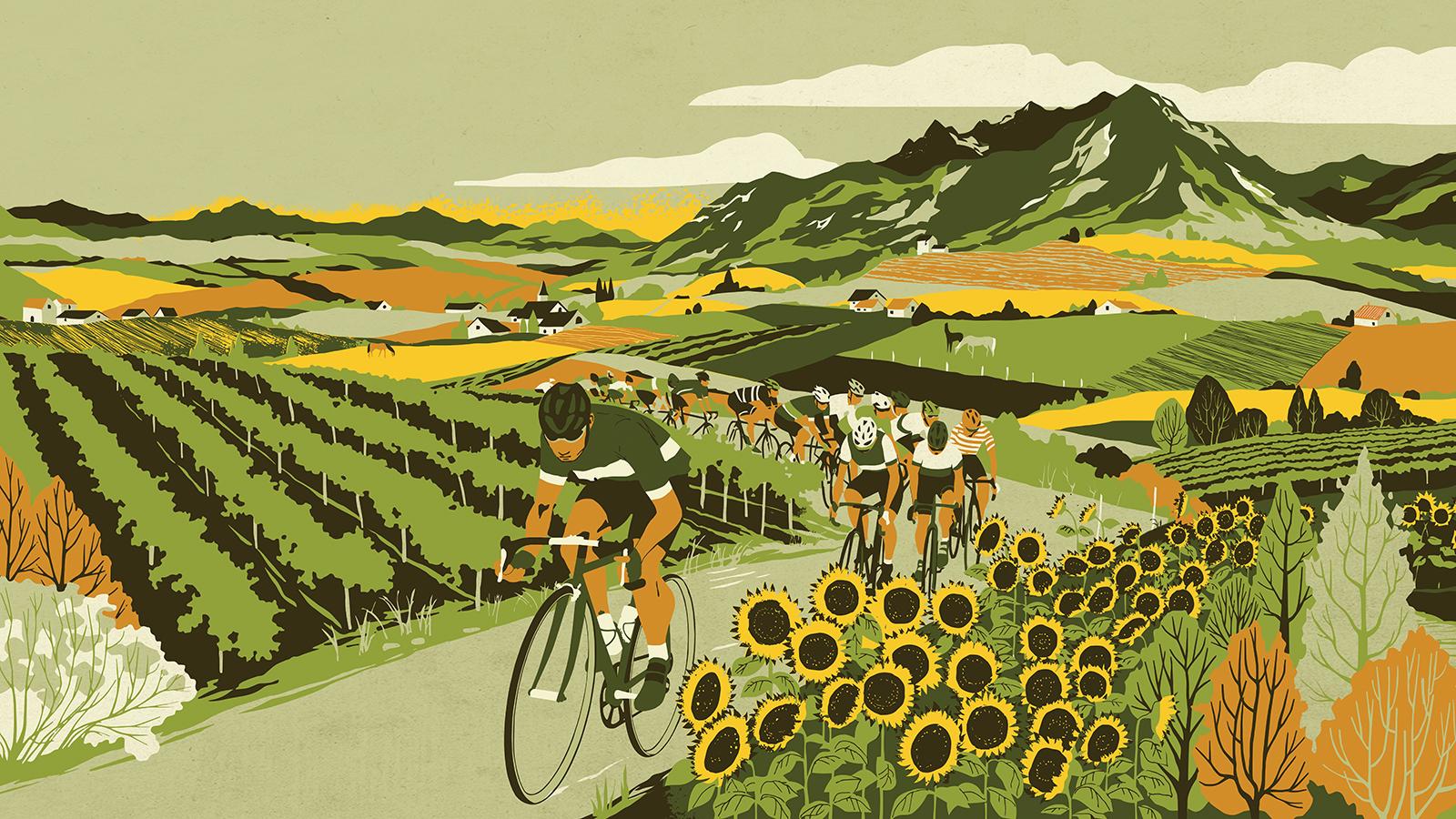 Cono Sur Tour De France Label