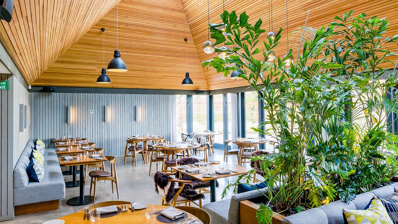 restaurant spotlight the woodspeen restaurant spotlight. Black Bedroom Furniture Sets. Home Design Ideas