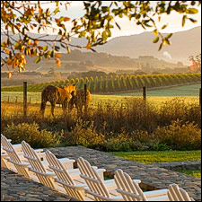 Tennessee Wineries With Bed And Breakfast